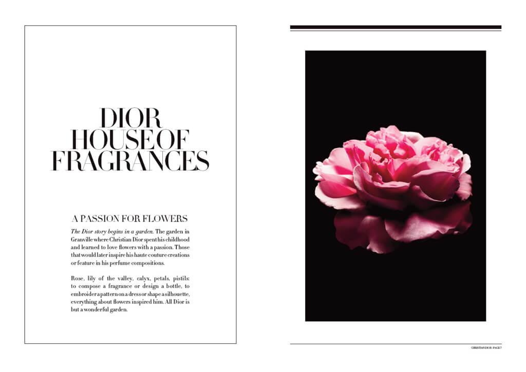 <p>Parfums Christian Dior : Livre de marque 2016</p>